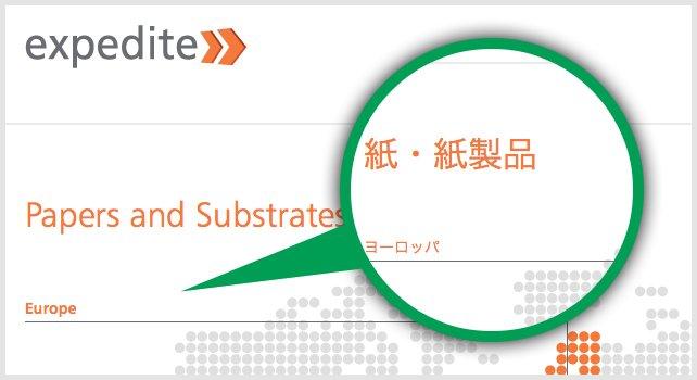 Expedite Multilingual Websites