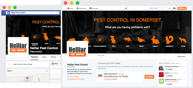 pest control social-media and wordpress website